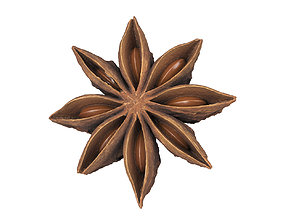 Photorealistic Star Anise 3D Scan 2