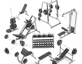 3D Large set for the gym by Bodysolid