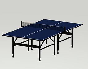 3D asset Lowpoly Ping Pong Table and Paddle