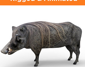 3d Wild Boar Rigged and Animated low poly animated