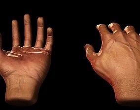 3D asset Male Hands - VR Compatible
