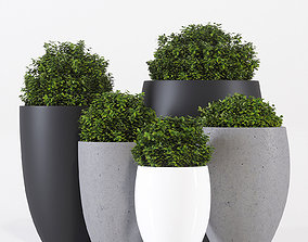 Pottery Pots five 3D