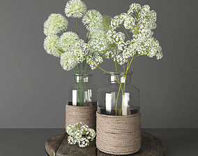 3D Bouquets 2 - decorative onions and gypsophila