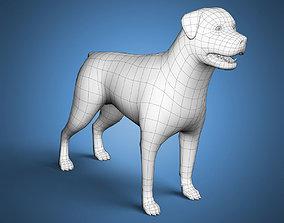Rottweiler Dog Base Mesh 3D model