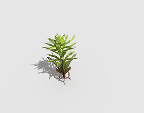 3D model realtime game Low poly Plant