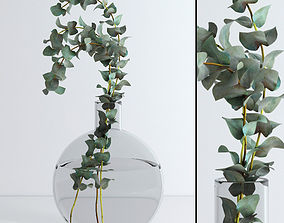 Eucalyptus Baby blue 3D model game-ready