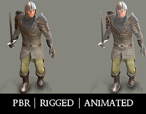 Medieval Knight in Chainmail 3D asset