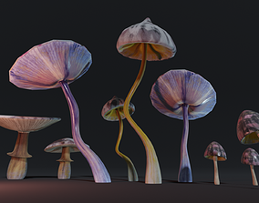 Mushroom collection 3D model