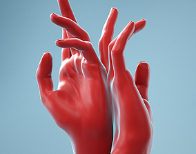 Back to Back Realistic Hand Model 16