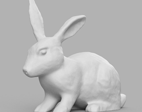 Lapin 3D print model