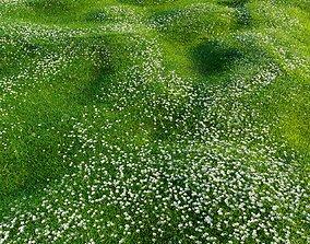 3D Bryozo lawn