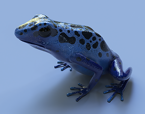 3D Blue poison dart frog arrow frog Dendrobates tinctorius