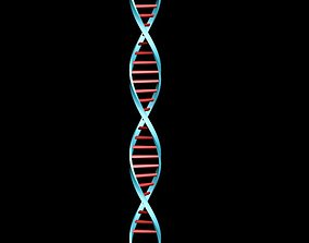 Deoxyribonucleic acid DNA 3D