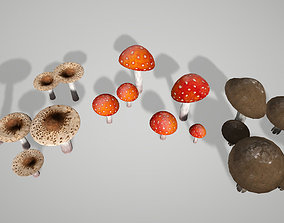 Mushroom Pack 3D model game-ready