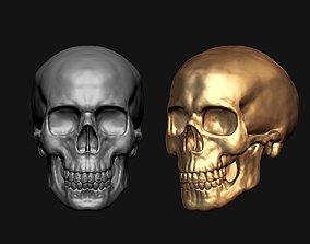 spine Skull 3D Model