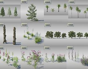 Vegetation - Pack 1 3D asset