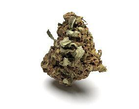 Cannabis Bud 02 3D model