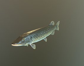 3D model The Pike