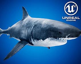3D model Great White Shark UE4