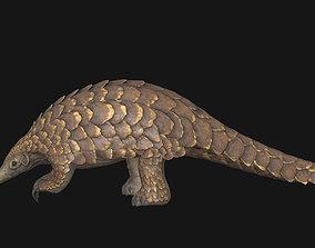 3D model Pangolin