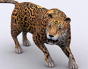 3DRT - Jaguar animated realtime