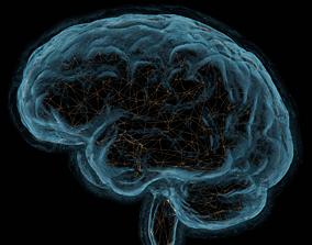 Scientific illustration about neural 3D