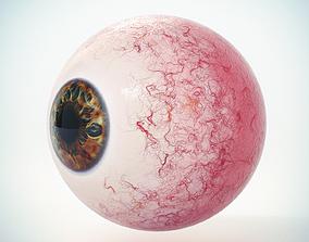 Eye Brown 1 Low Poly 3D model