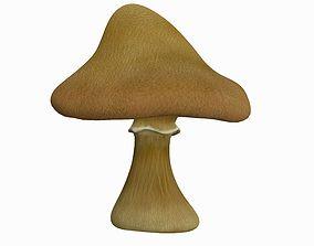 3D High Poly Mushroom