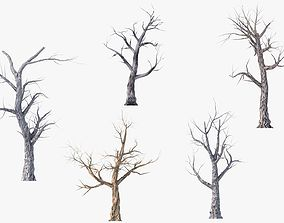 3D asset Low Poly Dead Tree Pack