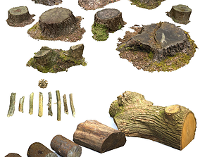 3D Woodland Photoscan Objects