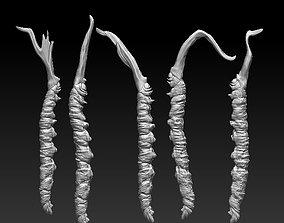 3D printable model Ophiocordyceps sinensis Cordyceps