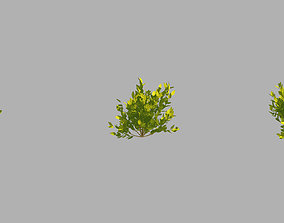 3D model Small plants 09