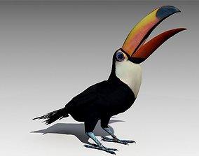 3D asset Toucan Animated