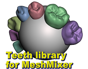 Teeth Library for MeshMixer 3D print model
