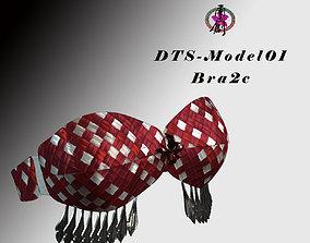 realtime DTS-Model01-Bra2C