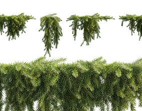 Acacia cognata Limelight - Weeping Acacia - 02 3D model