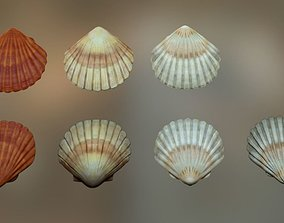 Mussel01 - 1k Triangles-Mesh and Decal 3D model