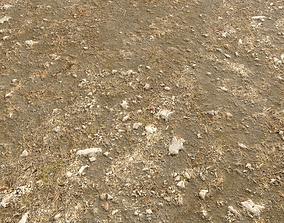 Arid Wasteland ground PBR Pack 1 3D