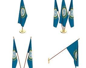 South Dakota Flag Pack 3D model