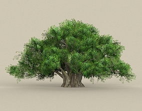 3D model Game Ready Tree 01