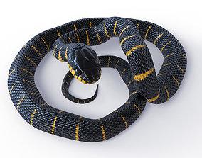 3D model Animated Mangrove Snake