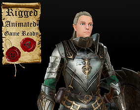Elf Knight 3D asset