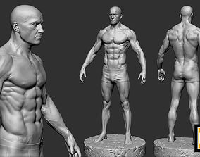 male anatomy study 3D printable model