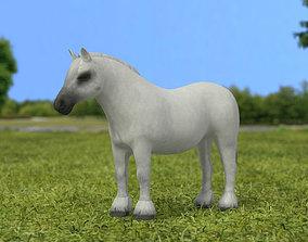 Pony Horse 3D