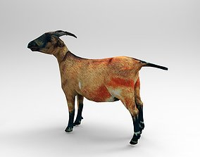 3D asset Red Goat Rigged
