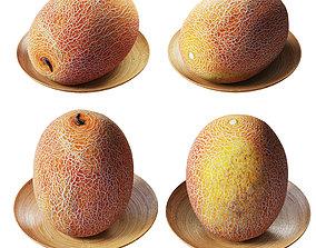 Melon galia 3D asset
