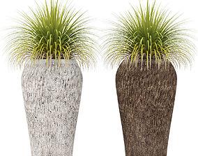 3D Potted plants 10