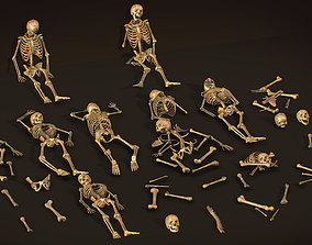 remains skeleton bone big pack 3d model realtime