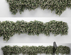 3D model Hanging Plant - ChoisyaTernata - 7 Modular Pieces