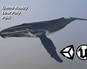 3D model Hump back whale